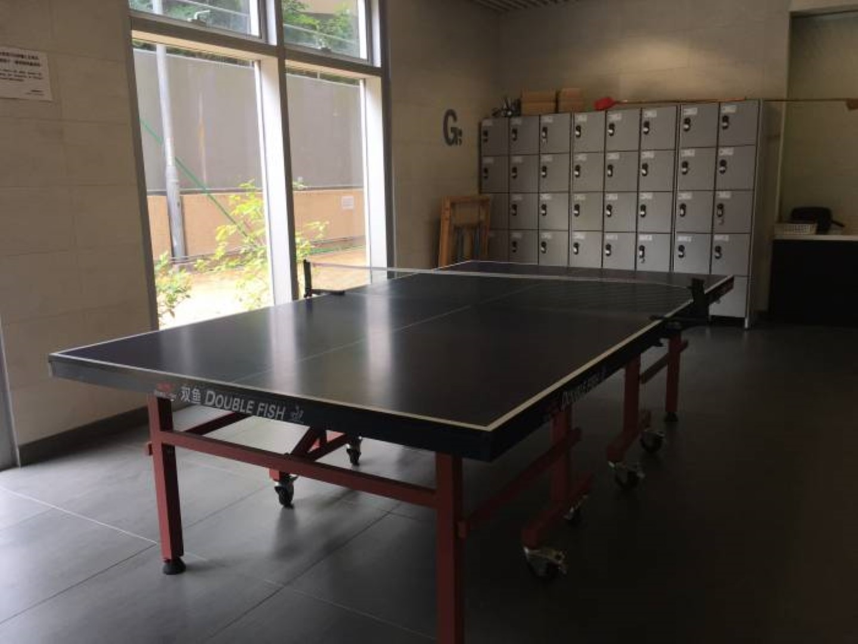 Table Tennis 乒乓球設施