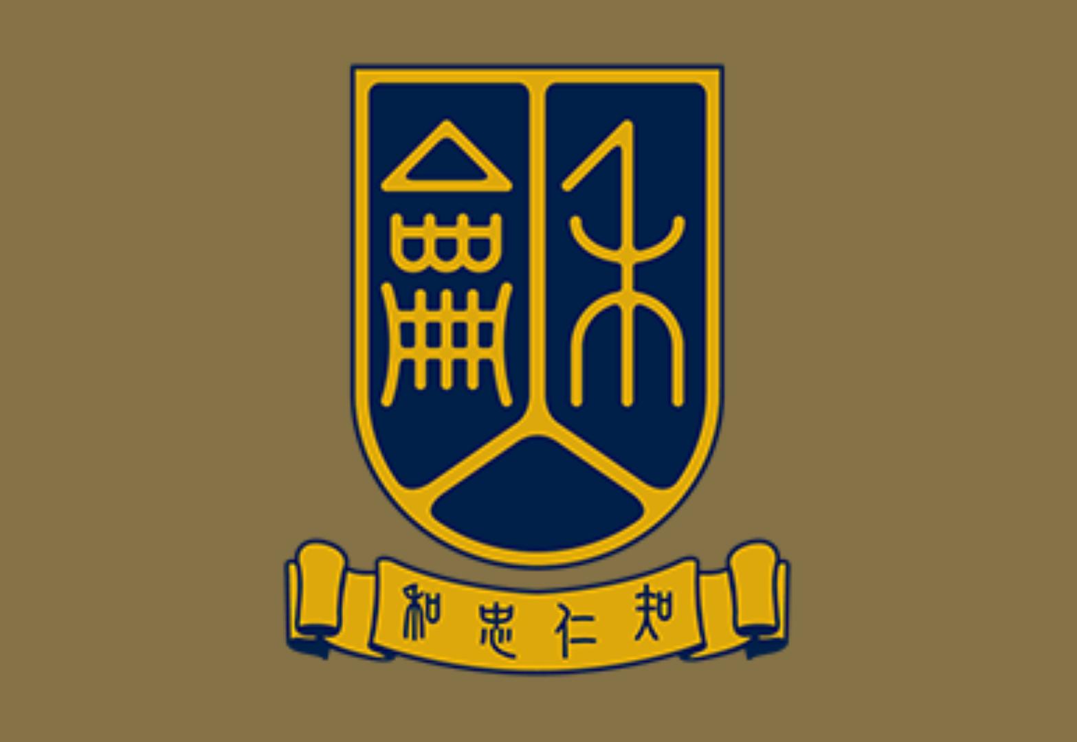 Prof. Oi-Lam NG 吳藹藍教授